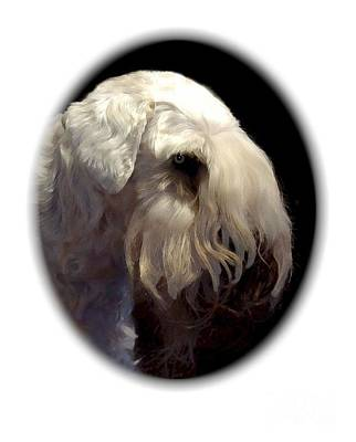 Sealyham Digital Art - Sealyham Terrier 650 by Larry Matthews