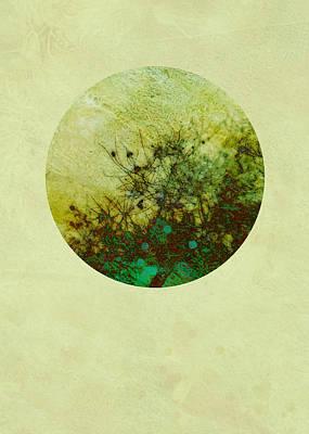 Seasons Of My Garden Print by Ann Powell