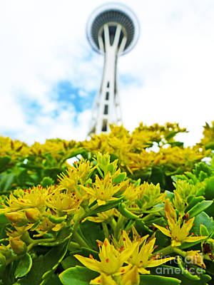 Sky Photograph - Seattle Space Needle -wide Angle by Nancy Harrison