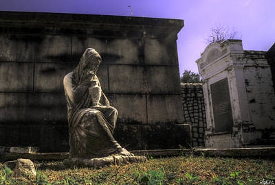 Photograph - Sentinel By The Grave by Stephen EIS
