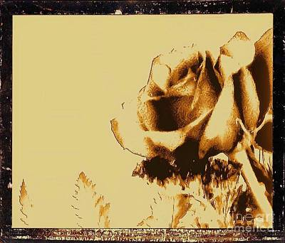 Antique Look Photograph - Sepia Rose by Marsha Heiken