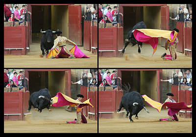 Sequence Of A Bullfight Action Print by Felipe Rodriguez