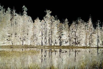 Yosemite National Park Mixed Media - Serenity by Bonnie Bruno