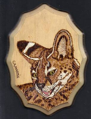 Pyrography Pyrography - Serval by Clarence Butch Martin