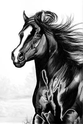 Shading Of A Horse In Bic Pen Print by Cheryl Poland