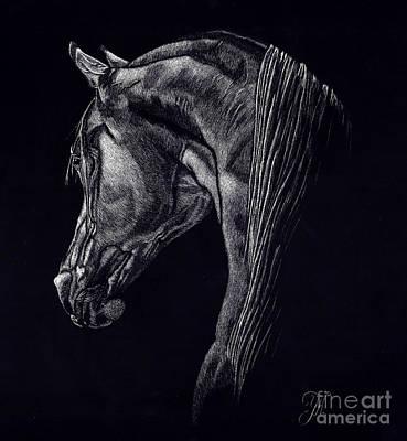 Shadow Print by Yenni Harrison