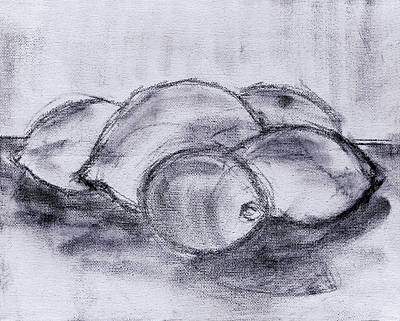 Polish Painters Painting - Sketch - Lemons And Limes by Kamil Swiatek
