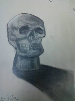 Holloween Drawing - Skull by Gabrielle Sassone