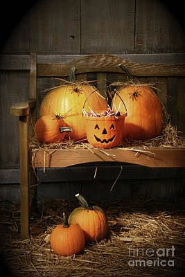 Vivid Fall Colors Photograph - Small And Big Pumpkins On An Old Bench  by Sandra Cunningham