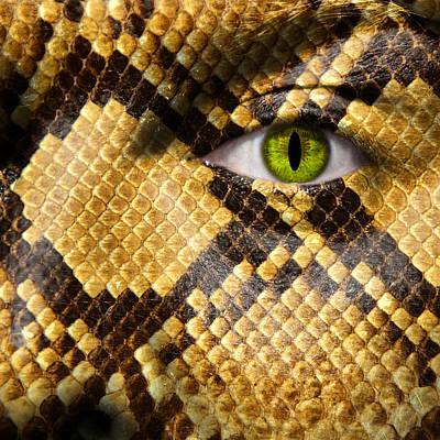Snake Eye Print by Semmick Photo