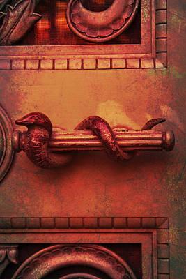 Brass Snake Photograph - Snake Handle by Bernice Williams