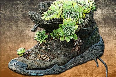 Sneaker Planter Print by Linda Anne Gibson