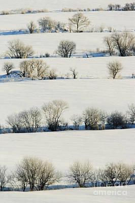 Snowy Landscape Print by Jeremy Woodhouse