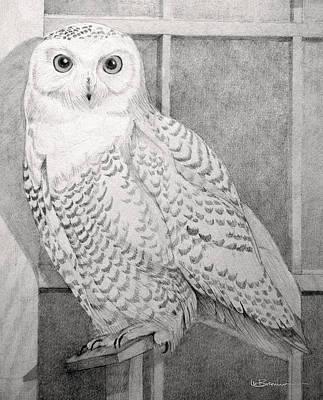 Snowy Owl Print by Leslie M Browning