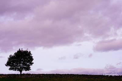 Solitude - Denbigh Moors Print by Georgia Fowler