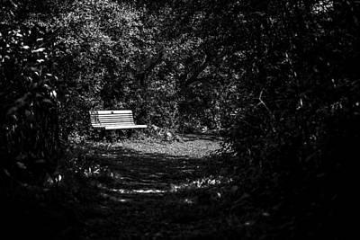 Solitude Print by CJ Schmit