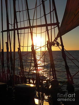 Maine Bounty Photograph - Sparkle In The Rigging by L Jaye  Bell