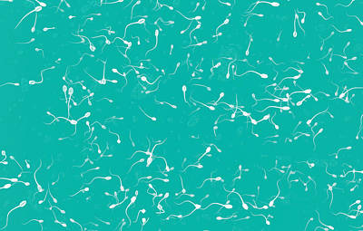 Sperm Cells Print by Christian Darkin