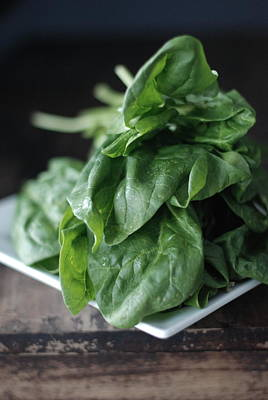 Spinach Photograph - Spinach by Shawna Lemay