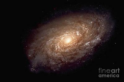 Spiral Galaxy Print by Nasa