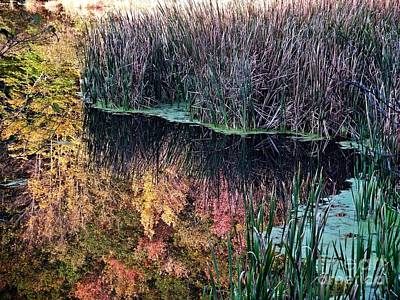 Splendor In The Grass Original by Christian Mattison