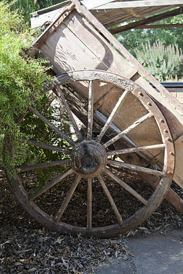 Wine Cart Photograph - Spoked by Carole Hinding