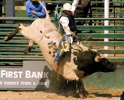 Of Rodeo Bucking Bulls Photograph - Spotted Anger by Cheryl Poland