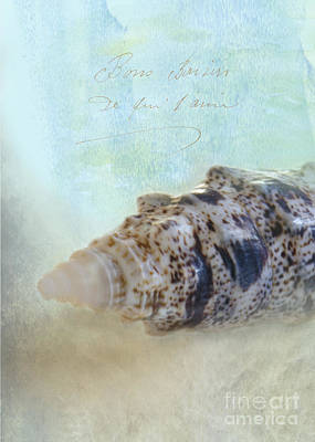 Spotted Auger Seashell Print by Betty LaRue