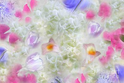 Spring Is In The Air Print by Cindy Lee Longhini