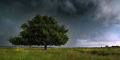 Spring Storm Print by Tim Nichols