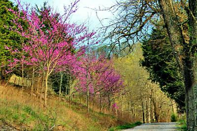 Springtime On A Country Lane Print by Kristin Elmquist