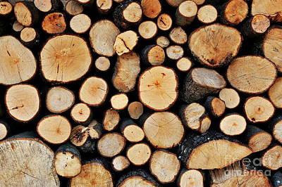 Stack Of Tree Logs Print by Sami Sarkis