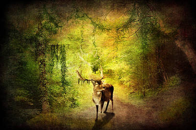 Fantasy Tree Mixed Media - Stag by Svetlana Sewell