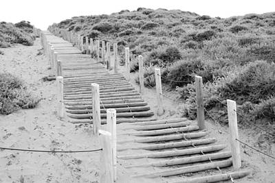 Wooden Photograph - Stairs At Baker Beach by Shane Kelly