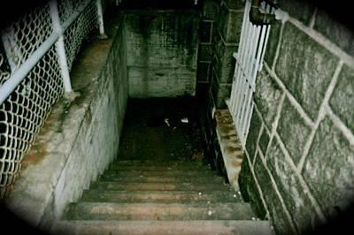 Photograph - Stairway To...  by Brynn Ditsche