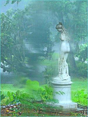 Standing In The Rain Print by Mindy Newman