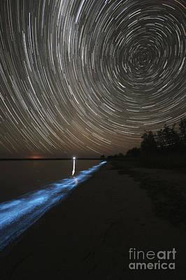 Star Trails Over Bioluminescence Print by Philip Hart