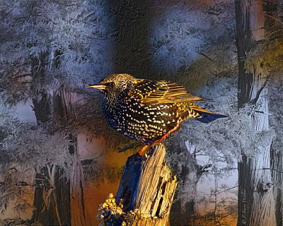 Starlings Digital Art - Starling Sitting High by J Larry Walker