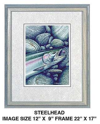Flyfishing Painting - Steelhead And Yarn Fly by JQ Licensing