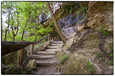 Steps To The Cave Print by Lisa  Spencer