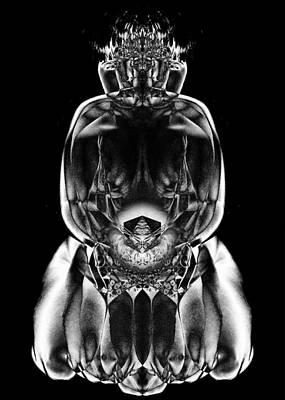 Transcend Photograph - Stone Supplicant by David Kleinsasser