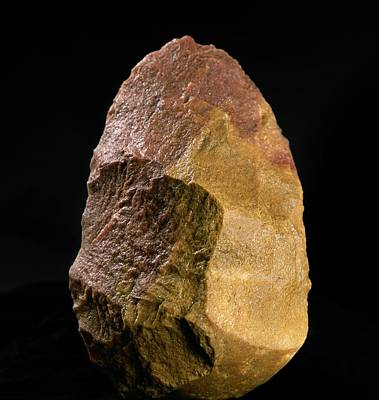 Stone Tool, Sima De Los Huesos Print by Javier Truebamsf