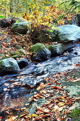 New England Fall Photograph - Stream In The Woods by HD Connelly
