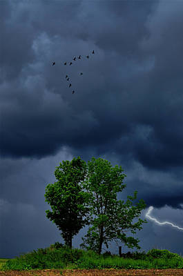 Lightning Photograph - Strike To Home by Emily Stauring