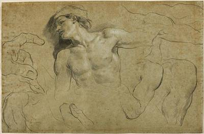 Studies Of Hands - Shoulders And A Leg Print by Carlo Cignani