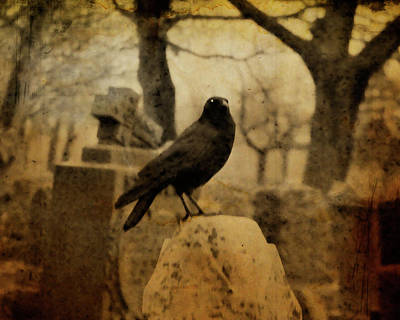 Eerie Digital Art - Study Of The Surly Raven by Gothicolors Donna