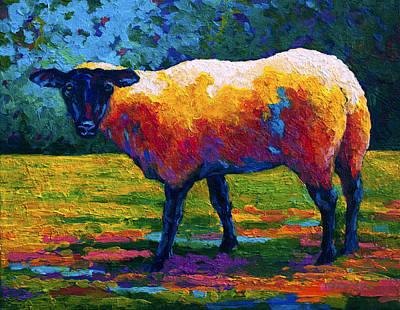 Sheep Painting - Suffolk Ewe IIi by Marion Rose