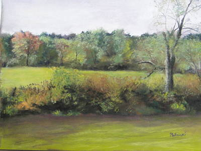 Summer Meadow Print by Cindy Plutnicki