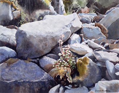 Summer Streambed Print by Sharon Freeman