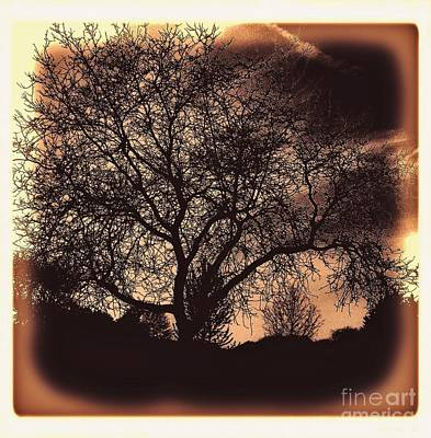 Wrap Digital Art - Sun Coming Up On A Lonely Tree by Marsha Heiken